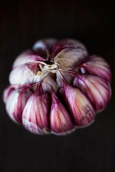 ecco un aglio con i suoi bellissimi spicchi... sapete già uno spicchio di aglio la mattina...