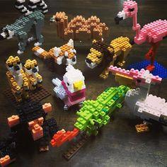"29 mentions J'aime, 9 commentaires - Kozue Himeno (@kozurin0323) sur Instagram: ""ナノブロックzoo!!!  とりあえず、チビ達に見つからない場所に置かなければ。。。  #zoo #nanoblock #動物園"""