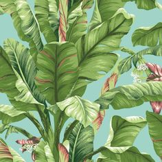 Sample Banana Leaf Wallpaper in Green and Blue design by York Wallcoverings