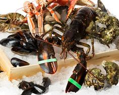 Shell fish Shrimp, Shells, Fish, Meat, Conch Shells, Seashells, Sea Shells, Snail, Ichthys