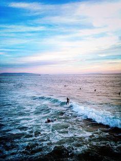 Venice beach surfing