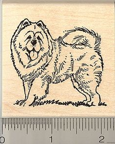 ee65290f18f Chow Chow Dog rubber stamp H9302 Wood Mounted