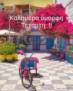 Greece, Neon Signs, In This Moment, Quotes, Painted Birds, Greece Country, Quotations, Quote, Shut Up Quotes