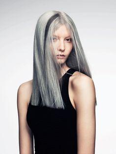 Gray Shine- Like the streak