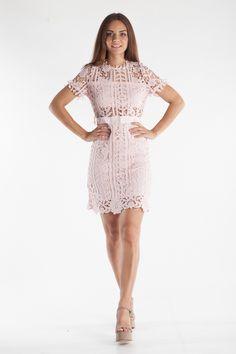 Κοντομάνικο φόρεμα με μήκος περίπου πάνω απ'το γόνατο με διάτρητη δαντέλα σε όλο το μήκος, ελαφρύ άνοιγμα στην πλάτη που κλείνει με κουμπί στο πάνω μέρος και στη μέση με φερμουάρ. Διαθέτει φόδρα από τη μέση και κάτω και στο στήθος.