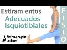 Cómo estirar los isquiotibiales sin implicar ni irritar al nervio ciático   Fisioterapia Online