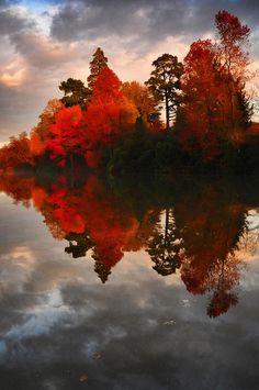 Autumnal reflection, Sheffield Park Garden