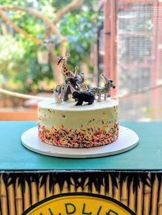 Party animals cake was a success! 3 Year Old Birthday Cake, Safari Birthday Cakes, Boys First Birthday Cake, Birthday Ideas, Animal Cakes For Kids, Shared Birthday Parties, Zoo Cake, Rosalie, Girl Cakes