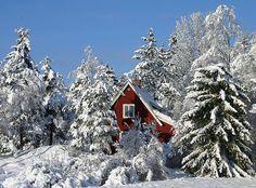 Google Image Result for http://oursurprisingworld.com/wp-content/uploads/2008/01/sweden_nature_06.jpg