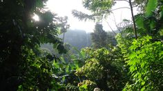 Aflabo Waterfalls, Leklebi Agbesia, Volta Region