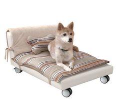Originales camas para perros   Articulos de Perros