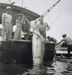 Hemingway with large Marlin caught in Cuba