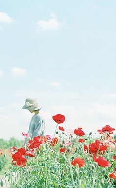 Girl amongst red poppies
