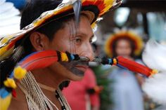 Tribal Headdresses From Around The World ~ Part VI Arte Plumaria, Amazon People, Forest People, Xingu, Rite Of Passage, American Spirit, People Around The World, Dandy, American Indians