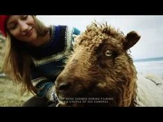 Faroe Islands fit cameras to sheep to create Google Street View   Travel   The Guardian