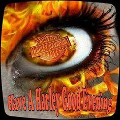 Shocking Harley Davidson Wallpaper Happy Birthday Ideas.17+ Divine Harley Davidson Wallpaper Happy Birthday Ideas #harleydavidsonroadkingwatches #harleydavidsonroadkingbagger #harleydavidsonroadkingart #harleydavidsonroadking2018 Harley Davidson Chopper, Harley Davidson Sportster, Harley Davidson Kunst, Harley Davidson Kleidung, Harley Davidson Roadster, Harley Davidson Quotes, Harley Davidson Tattoos, Harley Davidson Gifts, Harley Davidson Wallpaper