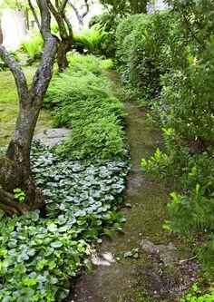 Polkujen värit ja materiaalit vaikuttavat ratkaisevasti puutarhan ilmeeseen ja tunnelmaan. Poimi inspiroivat vinkit Viherpihasta!
