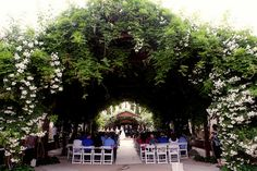 Wedding in Ceremonial Rose Garden by Albuquerque BioPark, via Flickr