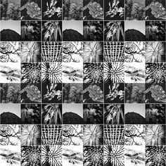 @artbyashish   Made a new Instagram   #BlackAndWhite #Monochrome #bnw #Wanderlust #wanderlusting #TravelPorn #TravelFun #TravelLife #TravelBlog #VscoPhile #Instagraphy #iphonography #iphonegraphy #vscocamera #Vsco #Snapseed #photoporn #Instagraphy #photographie #vscolove #vscolife #VSCOGrid #vscoblackandwhite #vscobeau #vscobeau #blackandwhitephoto #blackandwhitephotography #iphonephotography  #snapseedaily