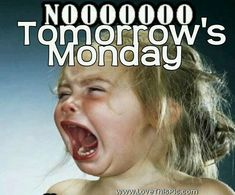 Humor Discover I hate mondays sunday quotes funny monday morning quotes sunday humor girls Sunday Morning Humor Monday Morning Quotes Happy Sunday Quotes Funny Sunday Sunday Gif Work Quotes New Quotes Funny Quotes Funny Monday Quotes Sunday Morning Humor, Monday Morning Quotes, Happy Sunday Quotes, Weekend Quotes, Funny Sunday, Sunday Gif, Work Quotes, New Quotes, Funny Quotes