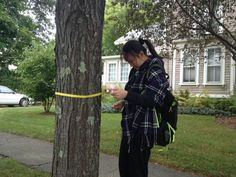 A student on the WMAction team helps take tree stats as part of an urban forest canopy project in Northampton.