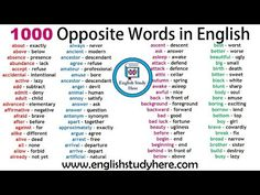 English 1000 Opposite / Antonym Words List, Opposites, Opposite Words about – exactly above – below absence – presence abundance – English Antonyms, English Verbs, English Sentences, English English, English Study, Opposite Words List, English Opposite Words, Learn English Words, English Learning Spoken