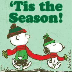 Christmas - Charlie Brown & Snoopy - Tis the season! Charlie Brown Quotes, Charlie Brown Und Snoopy, Christmas Quotes, Christmas Movies, Christmas Fun, Christmas Decorations, Peanuts Christmas, Charlie Brown Christmas, Peanuts Cartoon
