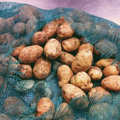 HUGE tater donation! Mash potatoes, baked patatoes, potato skins, hash browns, home fries, french fries, potato salad, gnocchi, potato pancakes, sheppard's pie, poutine, perogies, scallop potatoes. The possibilities are endless! #Yeg #hope #instagram