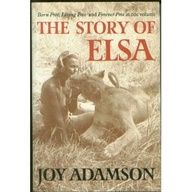 "The Story of Elsa: "" - http://pinliterati.com/the-story-of-elsa/"