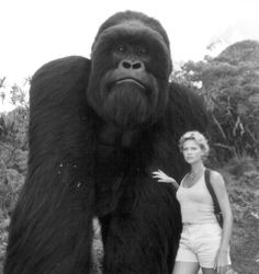 Still of Charlize Theron in Mighty Joe Young