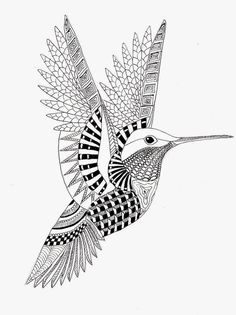 EFIE va Zentangle - Colibri Ben Kwok --par Efie - Bird and Feather Tangles Zentangle Drawings, Zentangle Patterns, Mandala Drawing, Doodles Zentangles, Bird Drawings, Hummingbird Drawing, Bird Coloring Pages, Zen Art, Bird Design
