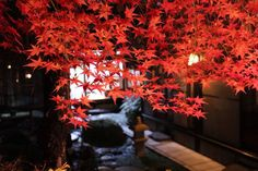 Check out this awesome listing on Airbnb: 100yo Traditional House Kangetsuso in Kyoto Fushimiku