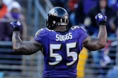 Terrell Suggs / Baltimore Ravens