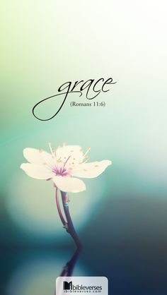 Romans 11:6  But if it is by grace, it is no longer on the basis of works; otherwise grace would no longer be grace.