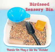 Birdseed Sensory Bin from Stir the Wonder