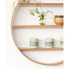 SHELF   circle in oiled finished oak by bride + wolfe   Cranmore Home
