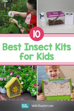 10 Buzz Worthy Creepy Crawly Insect Kits For the Classroom Outdoor Activities For Kids, Hands On Activities, Summer Activities, Play Based Learning, Project Based Learning, Science Experiments Kids, Elementary Science, Science Lessons