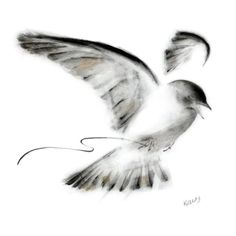Ink and charcoal drawing of a lark with worm