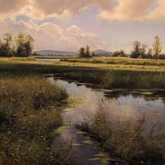 "Renato Muccillo Fine Arts Studio - ""Off McNeil Rd in August"""