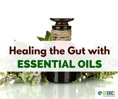 Healing the Gut withESSENTIAL OILS