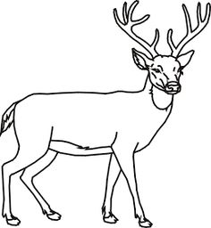 Wood Burning Deer Coloring Pages 43 Ideas For 2019 Deer Coloring Pages, Leaf Coloring Page, Farm Animal Coloring Pages, Detailed Coloring Pages, Adult Coloring Pages, Antler Drawing, Deer Drawing, Pallet Picture Display, Deer Outline