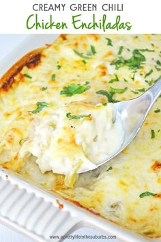 TheseCreamy Chicken & Green Chili Enchiladas are a simple and delicious dinner idea. And they can be on your table in under 1 hour! Use a rotisserie chicken to speed things up! Green Chilli Chicken Enchiladas, Sourcream Chicken Enchiladas, Green Chicken Enchilada Casserole, Rotisserie Chicken Enchiladas, Green Enchilada Sauce, Enchilada Recipes, Cream Cheese Enchiladas, Green Chilli Chicken Recipe, Creamy Chicken Casserole