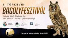Bagolyfesztivál 2020 Túrkeve Owl, Hungary, Owls