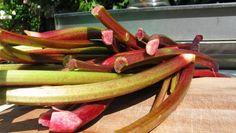 Rabarbra - Camilla Plums rabarbrachutney lages i ovn – ikke i kjele. - Foto: Fra tv-serien Camilla Plum: Mat som holder / DR