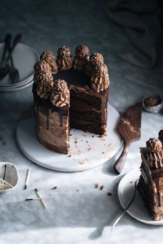 .nutella-stuffed chocolate hazelnut dream cake