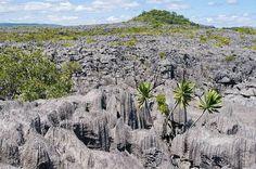 Lugares que visitar antes de hacerte viejo : Madagascar / @paconadal @elviajero_pais | #madagascar