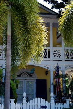 Key West gingerbread porch and foxtail palm