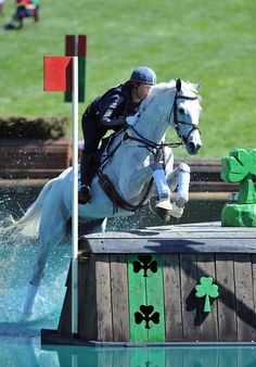 Would hate to fall over this jump, what a wet landing it would be! Horse Age, Horse Girl, Cross Country Jumps, Horse Riding Tips, Majestic Horse, English Riding, Most Beautiful Animals, White Horses, Show Jumping