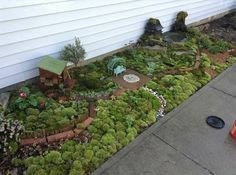 Large fairy garden- this would be great in my front yard next to the sidewalk. Large Fairy Garden, Fairy Garden Plants, Fairy Garden Houses, Gnome Garden, Fairy Gardening, Garden Bed, Side Garden, Herb Garden, Fairy Village