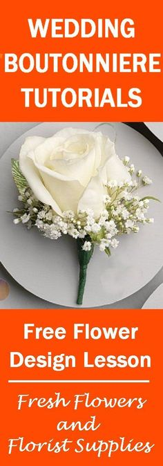 Learn how to make bridal bouquets, corsages, boutonnieres, church decorations and outside wedding decor. Buy fresh flowers and discount florist supplies